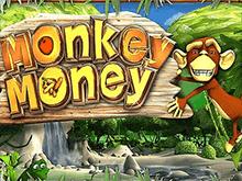 Деньги Обезьяны – качественный слот на деньги